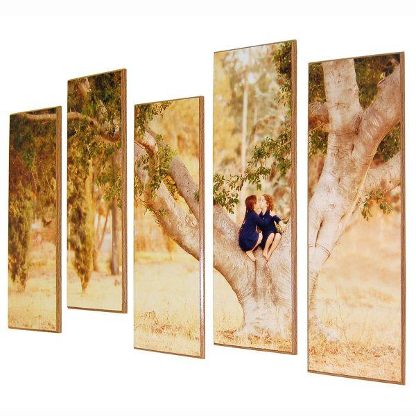 תמונת טבע משפחתית מחולקת אמנותית בגבהים שונים מודפסת על עץ