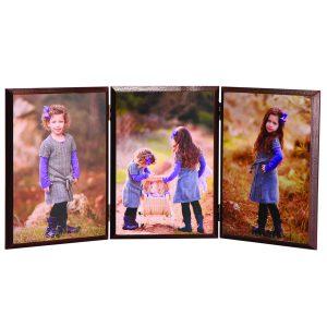 אקורדיון 3 תמונות על עץ