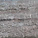 עץ אפור מטאלי
